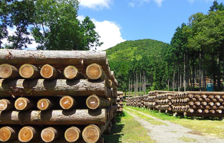 【安成工務店】毎日を木とともに「香りの家」